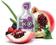 exo-new.jpg